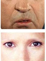 Eyebrows and Face Recognition