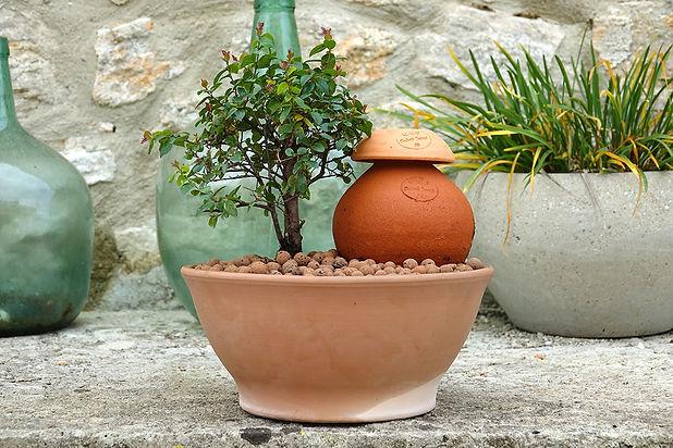 ollas-jamet-miniserre-riego-bonsai-vacac