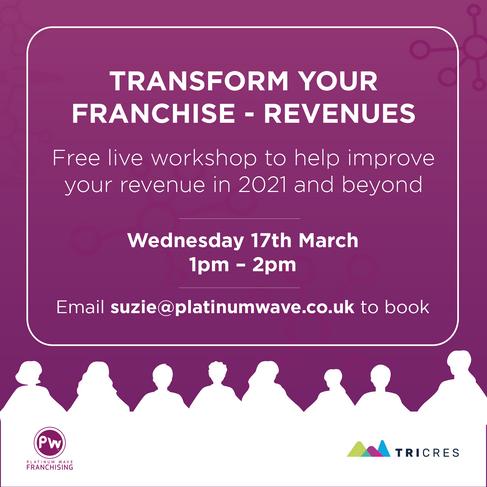 Platinum Wave_Virtual Seminars_Revenues