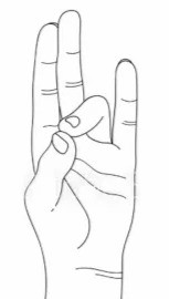 Join the tip of the middle finger with the tip of the thumb, keeping the rest of the three fingers straight. This mudra is a combination of the ether element, with the sun, and pertains to any ailment involving sound