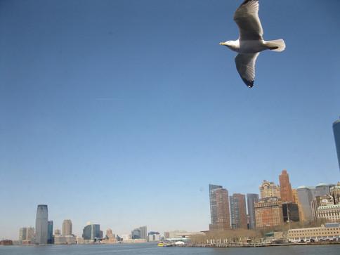 New York (900).JPG