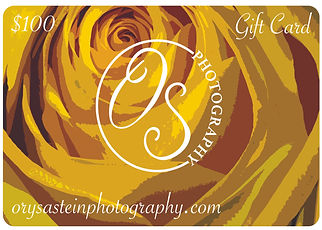 $100 Gift Card.jpg