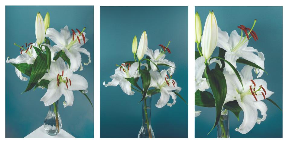 Lilies 2 triptych.jpg