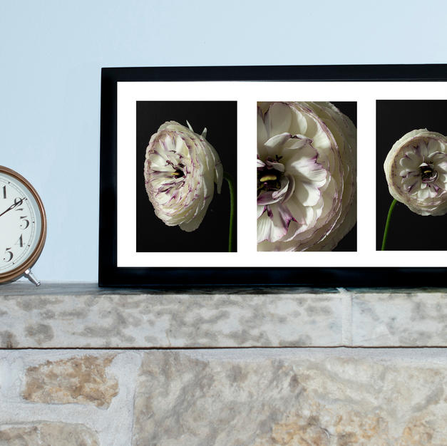 Purple Accents Triptych