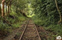 Vias del Tren