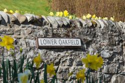 Lower Oakfield