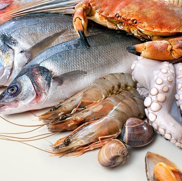 Fresh-seafood-portugal-carabinero-sapate