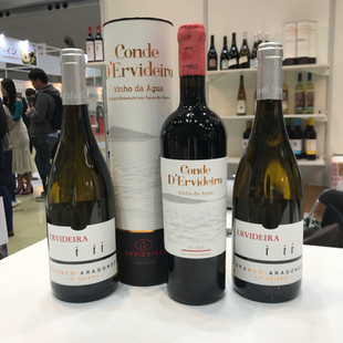 ood-exhibition-service-wine_gourmet2019-