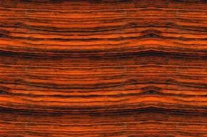 世界で一番重い木材は!?①