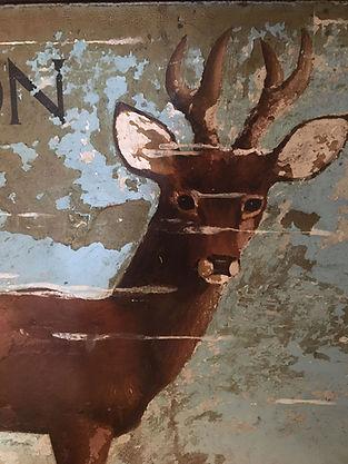 Buck 2.jpg