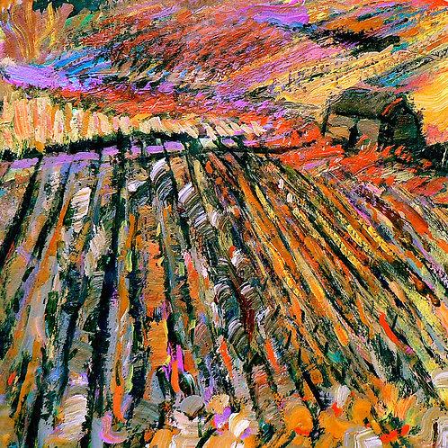Stripe Field II - Signed Giclée Print