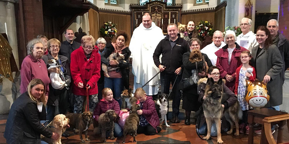 Blessing of Pets and Special Toys 2019