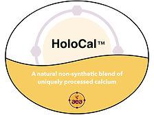 HoloCal.jpg