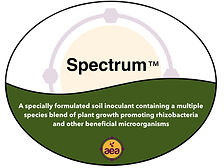 Spectrum Final.jpg
