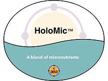 Holomic.jpg