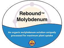 Rebound Molybdenum.jpg
