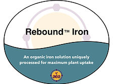 Rebound Iron.jpg