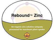 Rebound Zinc.jpg