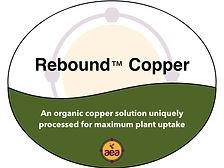 Rebound Copper.jpg