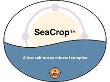 SeaCrop.jpg