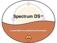 Spectrum DS.jpg