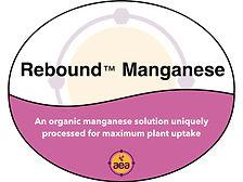 Rebound Manganese.jpg
