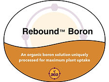 Rebound Boron.jpg