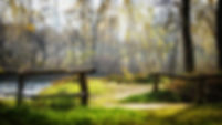 autumn-2986075_1920.jpg