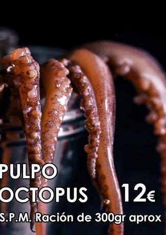 PULPO- 2).jpg