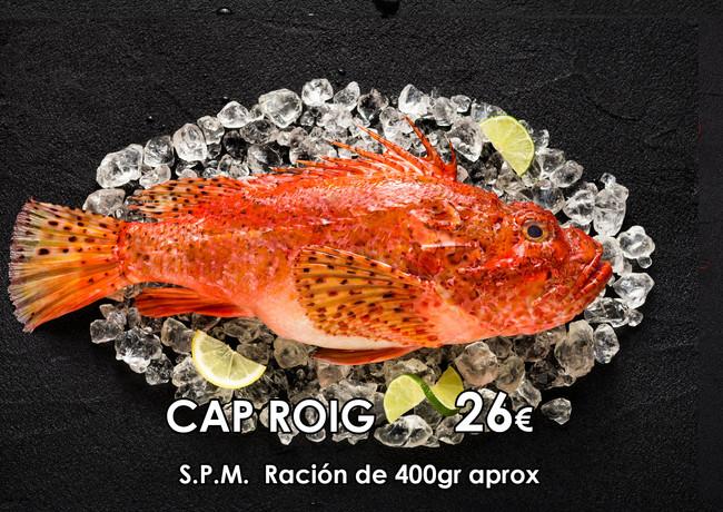 CAP ROIG - 2).jpg
