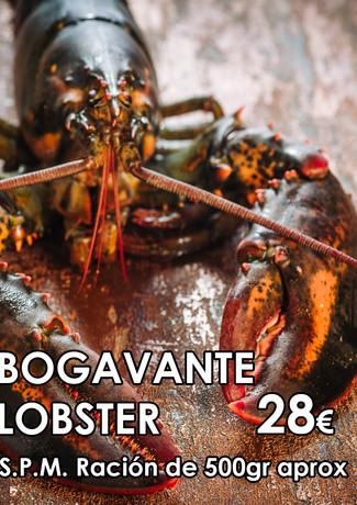 BOGAVANTE-SA  2).jpg