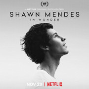 Shawn Mendes Documentary 'In Wonder' Coming to Netflix