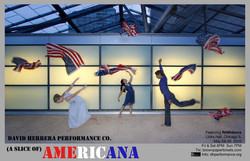 (A Slice of) AMERICANA (2010)