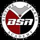 BSA New Logo.PNG