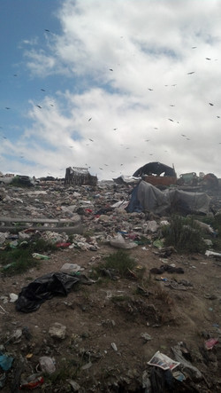 Landfill or Home