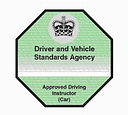 DVSA Registered Driving Instructor