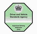 DVSA Registered Driving Instructor