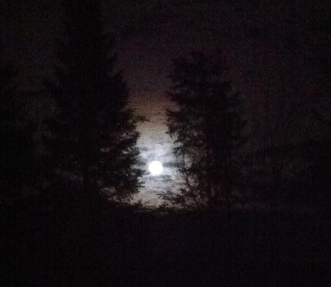 The Big-Moon