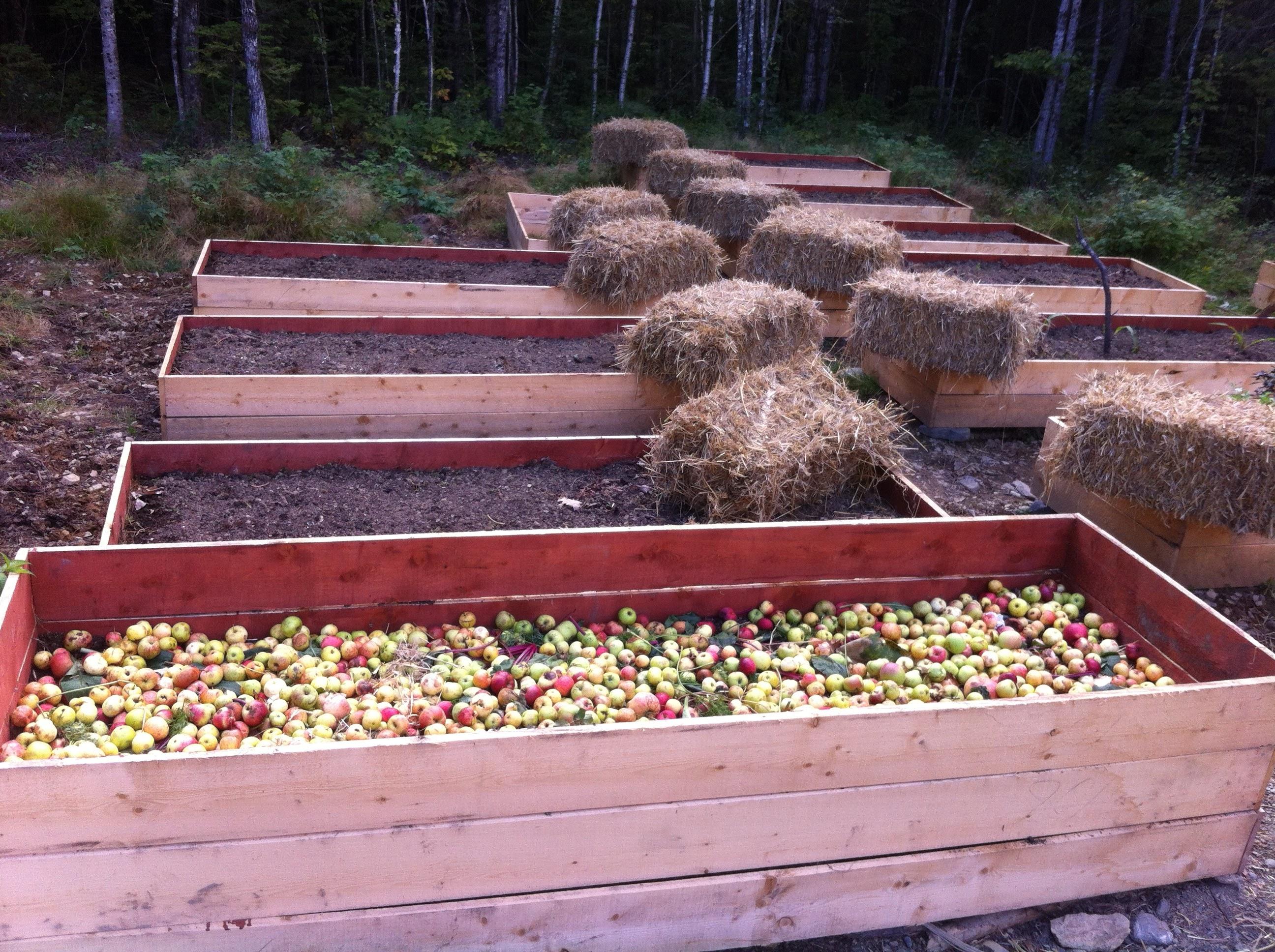 34 organic raised beds