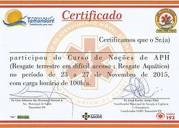 certificado_curso_IV_APH.jpg