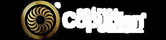 logo copyplan prosite.png