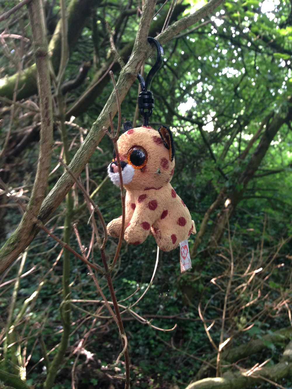 Photo of a small toy in a tree