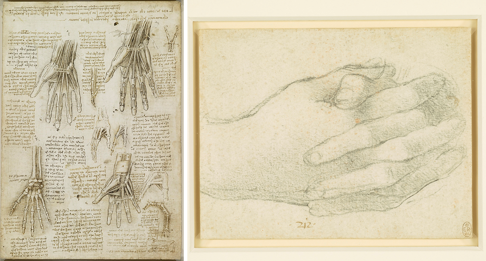 Leonardo da Vinci drawings of hands