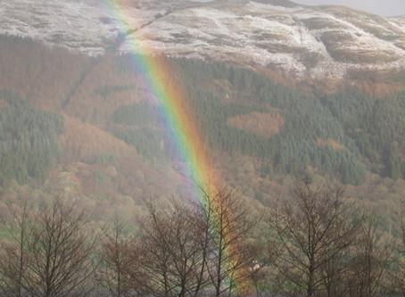 Rainbow Walk