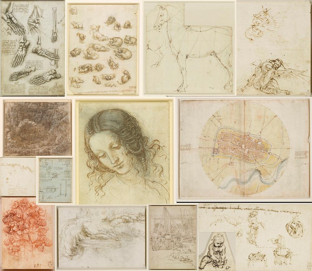 Collage of images by Leonardo da Vinci