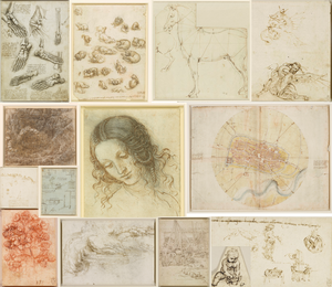 Collage of images by Leonardo da Vinci