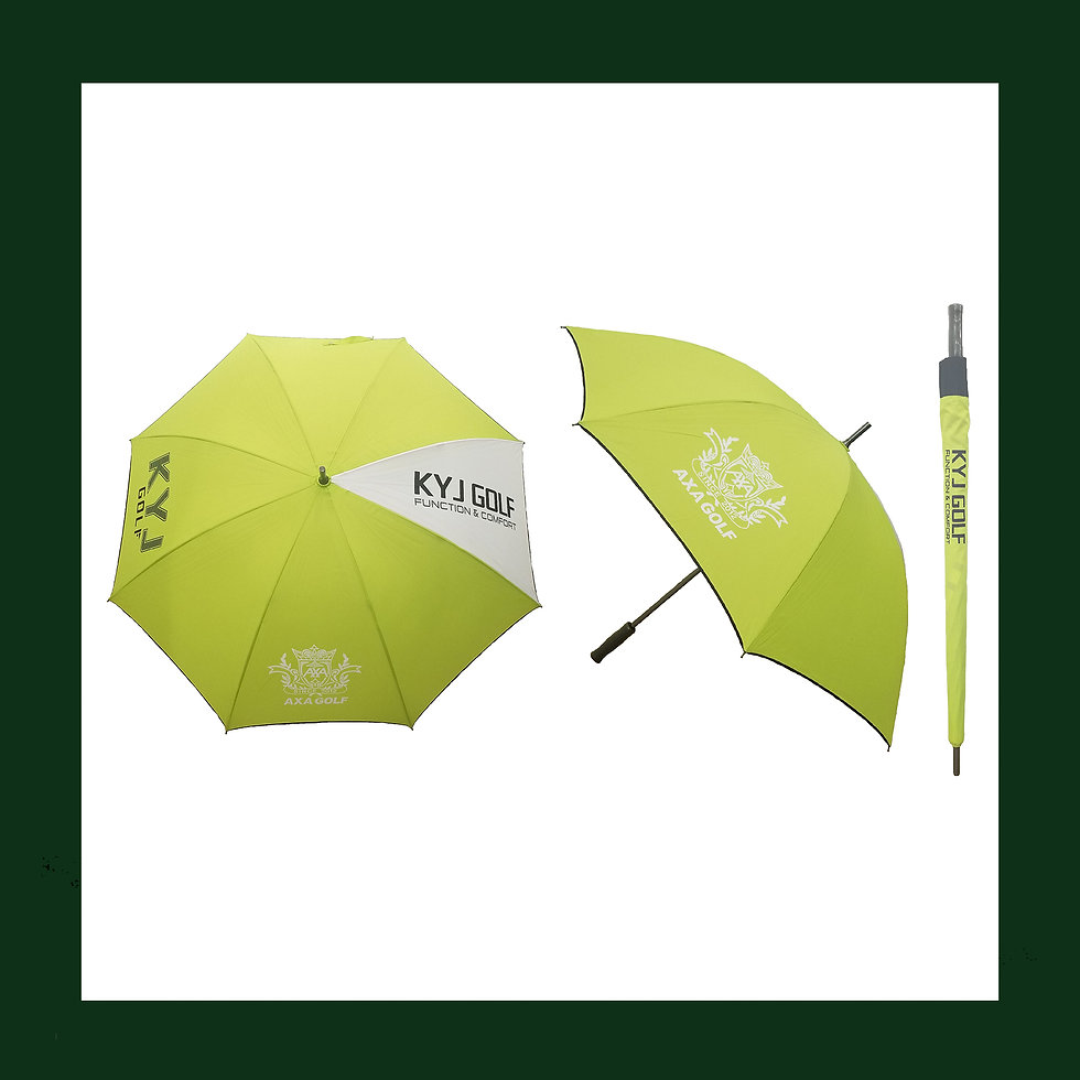 AXA Umbrella.jpg