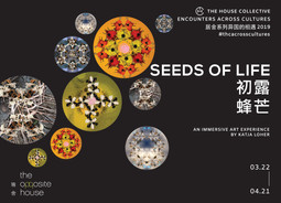 "SEEDS OF LIFE : An Art Experience in Beijing. ""Encounters across cultures"" The House Collective laun"