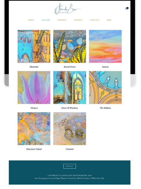 5 Must-Haves in Your Website Design for Professional Artists