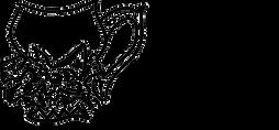 CNykoluk Earthshaper Logo - Transparent.